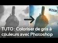 TUTO : Colorisation : comment passer de gris à la couleur dans Photoshop