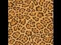 Peau de Leopard