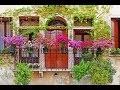 Choix des fleurs pour le balcon et la terrasse