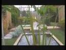 Paysagiste, aménagement extérieur : jardin aquatique, aménager un bassin, www.lesbojardins.com