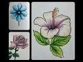 Colorier des fleurs aux crayons de couleur