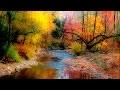 Musique Relaxante, Flûte et de la Nature, Musique pour Dormir