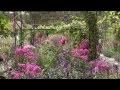 Visite des Jardins de Claude Monet - Jardin et Nymphéas