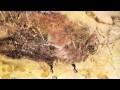 Les Peintures rupestres de la grotte de Lascaux