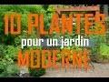 Quelles plantes pour un jardin moderne : 10 PLANTES