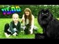 [VLOG] On joue avec le chat et des ficelles ! Minouche Outdoor