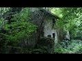 DeÌ�frichage de ma maison abandonnée dans les bois