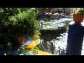 MARRAKECH - Le jardin Majorelle -  IDIR - A vava Inouva