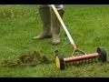 Comment scarifier la pelouse