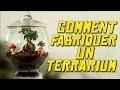 COMMENT FABRIQUER UN TERRARIUM - EXPERIENCE