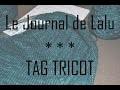 Le Journal de Lalu - TAG TRICOT