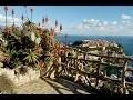 Jardin Exotique de Monaco - Un jardin suspendu