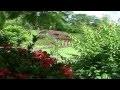 les Antilles paysages de la Martinique l'ile aux fleurs