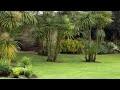 Jardins d'ici et d'ailleurs - ARTE