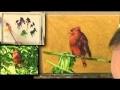 Peindre les oiseaux - cours de peinture en vidéo