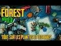 THE FOREST - Tous sur les plantes et les baies
