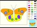Papillon jeu de coloriage en ligne - jeux pour enfants