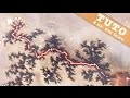 2000 VOLTS SUR DU BOIS - Les fractales de Lichtenberg