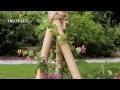 Créer un support pour plantes grimpantes : plein soleil - Jardinerie Truffaut TV