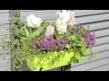 Créer une belle jardinière fleurie - Jardinerie Truffaut TV