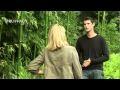 Entretien du bambou : phyllostachys et fargesia - Jardinerie Truffaut TV