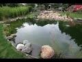 Bassin de jardin de grande classe une création de Normandie koi
