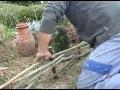 comment décorer  son jardin: tressage des saules