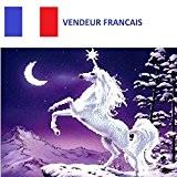 5D Broderie diamant toile entière, kit complet VENDEUR FRANÇAIS (La licorne dans la nuit 40 x 31)