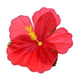 Boland 52513 - Set 24 Décorations florales Hibiscus Hawaii, multicolore