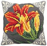 Collection D'Art 5123 Lys Orange Kit de Coussin Gros Trous Coton Multicolore 50 x 45 x 0,1 cm