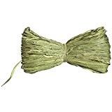 DIGE n27rb05/61 - Raphia naturel vert anis 16 grammes