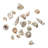 Dorure Conque Perles Coquillage Fabrication Bijoux DIY Plage Cadeau - Argent