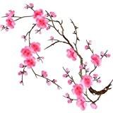 Ecusson Thermocollant Ecusson BrodéCalycanthe Fleur du Prunier Appliqué à Coudre pour Décoration et Vêtements