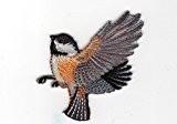 Ecusson thermocollant Oiseau C