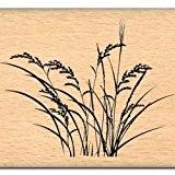 Florilèges Design FE112005 Tampon Scrapbooking Fines Herbes Beige 5 x 7 x 2,5 cm