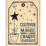 Florilèges Design FE214051 Tampon Scrapbooking Cultiver la Magie Beige 8 x 6 x 2,5 cm