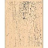 Florilèges Design FG212082 Tampon Scrapbooking Craquelé Beige 10 x 8 x 2,5 cm