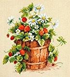 Kit de broderie point de croix fleurs/fraises 24x26 cm