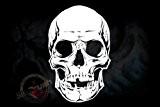 Pochoir pour aérographe motif crâne tête de mort-skull stencil grand modèle