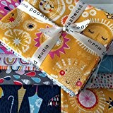 Rain soleil/arc-en-ciel Fabric Bundle Lot de 18 coupons de tissu-DASHFB11-Bleu/jaune/rose/Orange/gris/blanc-Rain or Shine byUK Maison Dashwood Studio-Fat Quarter Bundle 7 (55 ...