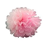 rangebow Lot de 10pompons en papier soie mélange couleurs à choisir à plat Lot de 6825,4cm Petit Moyen Grand Pom ...