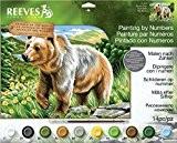 Reeves peinture par numéros, multicolore, Bär