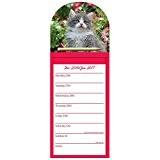 Robert Frederick 2017Calendrier Magnétique Pad Kimberlin Motif chatons, en plastique, couleurs assorties