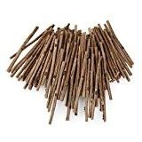 ROSENICE 100pcs journal bois colle pour l'artisanat bricolage Photo accessoires 10CM Long 0,3-0,5 CM de diamètre