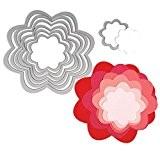 Sizzix  18657553 Big Shot Fleurs Framelits Set de 7 Matrices de Découpe pour Machine Plastique Multicolore 16 x 1 ...