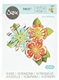 Sizzix 661097 Lot de 10 Thinlits Dies Mix Fleuri par Lori Whitlock Métal Multicolore 20,5 x 13,4 x 0,4 cm