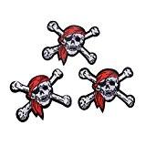 Souarts Lot de 5pcs Écusson Brodé Patch Thermocollant Crâne Pirate pr DIY Denim Fabric 6.3x5.2cm