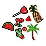 Souarts Mixte 8PCS Fruits etc Écusson Brodé Patch Thermocollant pr DIY Denim Fabric 2.15cmx2cm-8.6cmx3.9cm