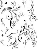 Tampon Transparent Arabesques florales B - Artémio