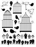 Tampon Transparent - Cages et oiseaux - Artémio